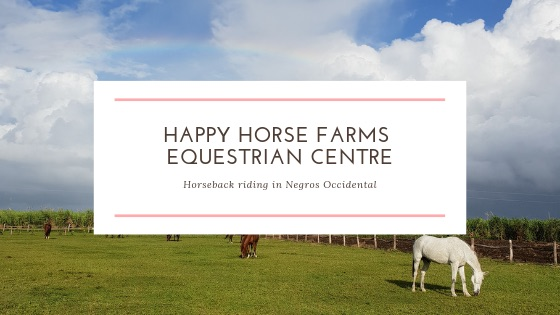 HAPPY HORSE FARMS EQUESTRIAN CENTRE copy